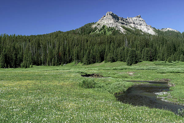 Photograph - Wyoming Landscape by Ronnie and Frances Howard