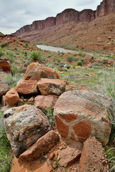 Photograph - X Marks The Spot Along Colorado River In Utah by Ray Mathis