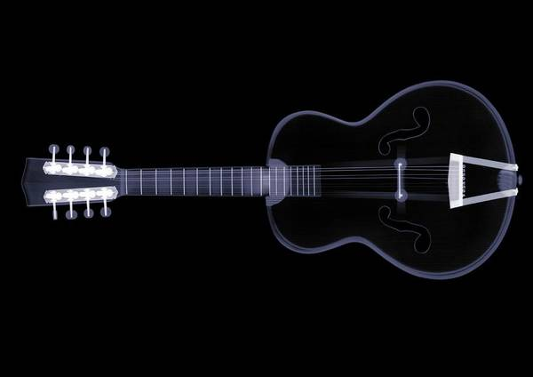 Guitarist Photograph - X-ray Of Eight String Guitar by Nick Veasey