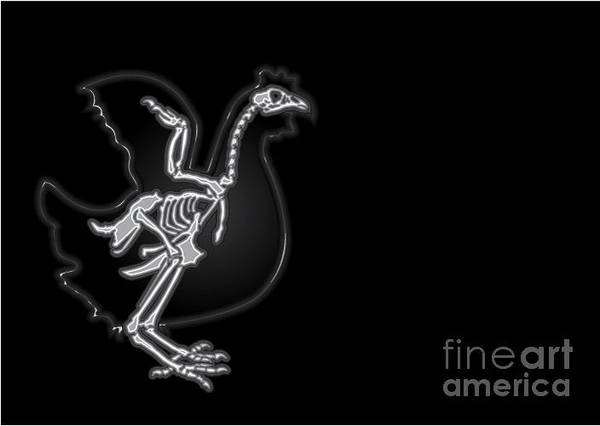 Health Wall Art - Digital Art - X-ray Vector Chicken by Anton novik