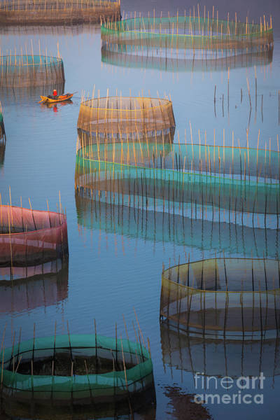 Wall Art - Photograph - Xiapu Colored Nets by Inge Johnsson