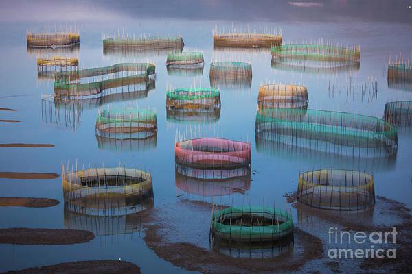 Wall Art - Photograph - Xiapu Tidal Flats by Inge Johnsson