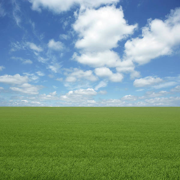 Cultivate Photograph - Xxl Green Grass Field by Sharply done