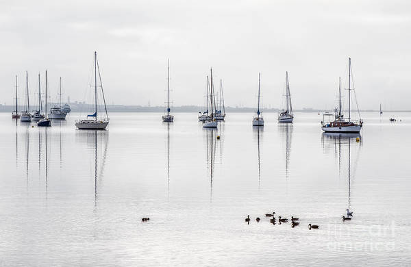 Wall Art - Photograph - Yachts, And Early Morning Reflection On by Ketut Suwitra