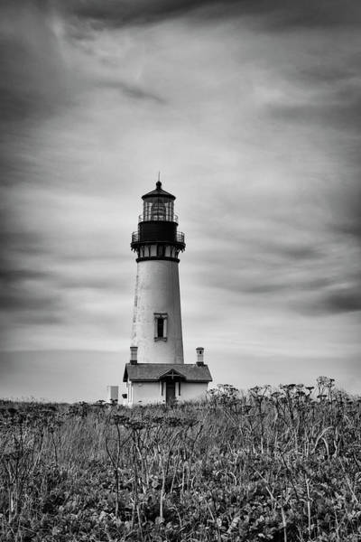 Photograph - Yaquina Lighthouse by Steven Clark