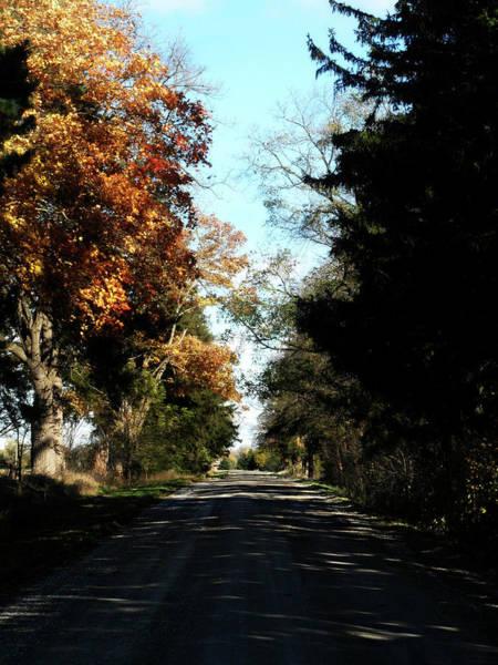 Photograph - Ye Old Tracks Road by Cyryn Fyrcyd