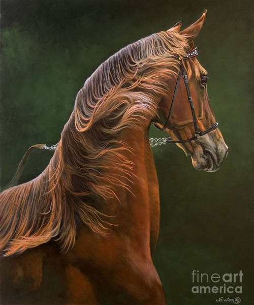 Wall Art - Painting - Yearling Colt by Jeanne Newton Schoborg