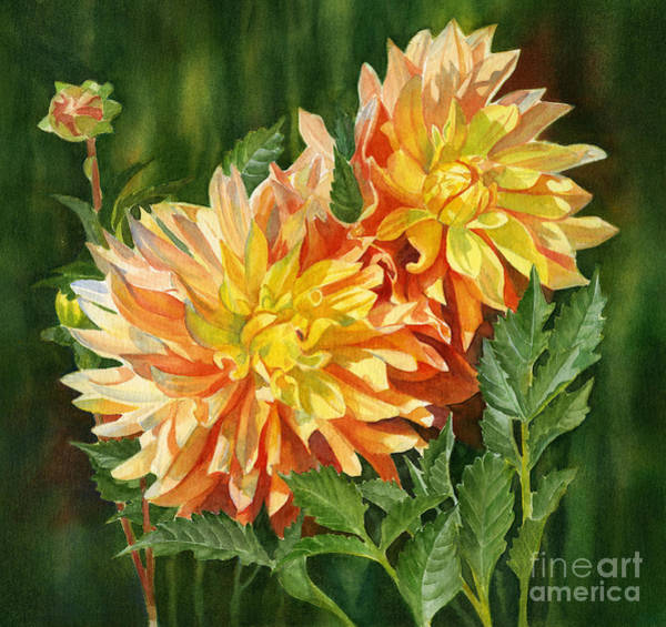 Wall Art - Painting - Yellow And Orange Dahlias With Dark Background by Sharon Freeman