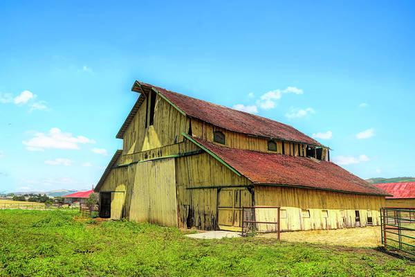 Photograph - Yellow Barn Nipomo California II by Floyd Snyder