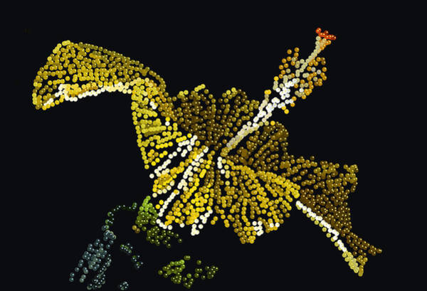 Digital Art -  Yellow Bedazzled Hibiscus   by R  Allen Swezey