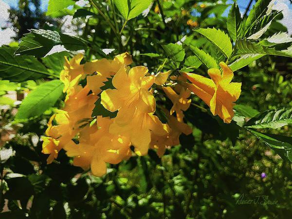 Yellow Trumpet Mixed Media - Yellow Bells - Sun And Shade by Robert J Sadler