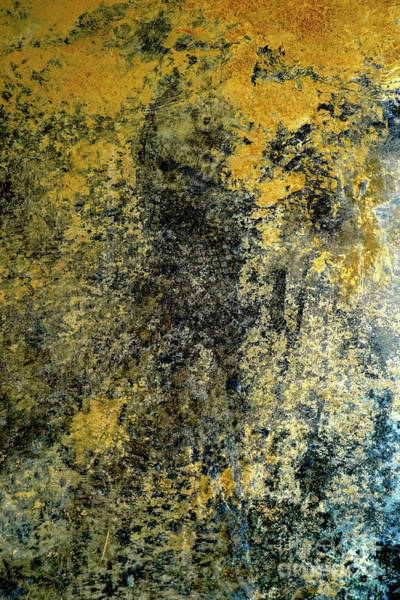 Wall Art - Photograph - Yellow, Black, Brown And Blue Background V1 by Vladi Alon