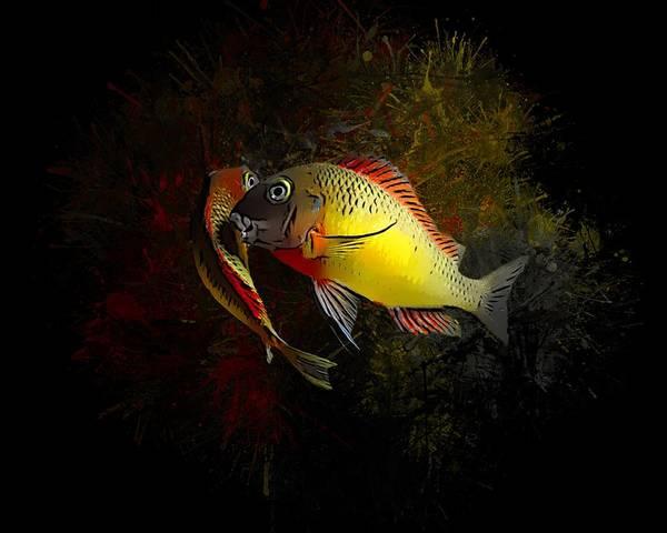 Digital Art - Yellow Blunthead Cichlid Dance by Scott Wallace Digital Designs