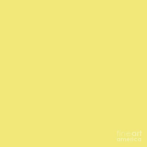 Digital Art - Yellow Bright by Sharon Mau