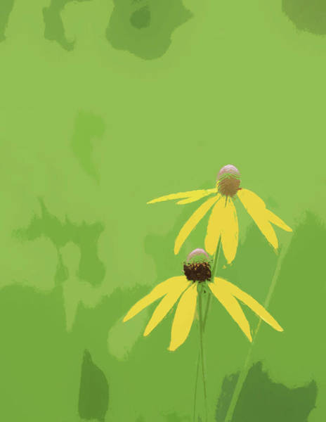 Painting - Yellow Coneflowers On Green by Dan Sproul