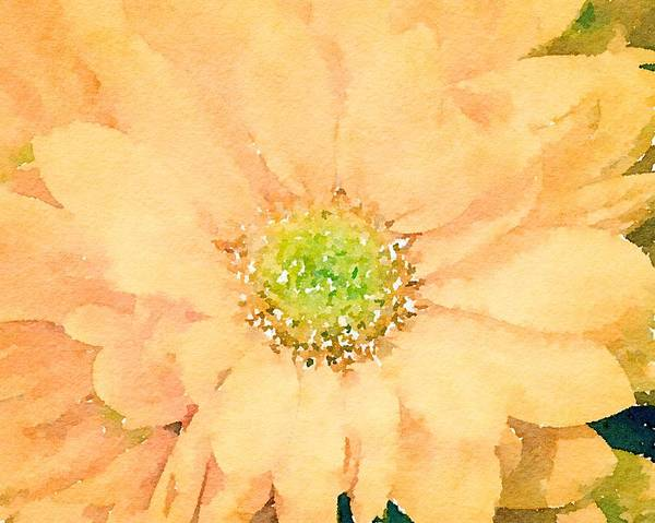 Mixed Media - Yellow Flowers by Susan Rydberg