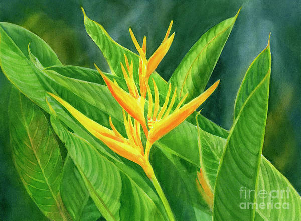 Heliconia Wall Art - Painting - Yellow Heliconia Paradise With Leaves by Sharon Freeman