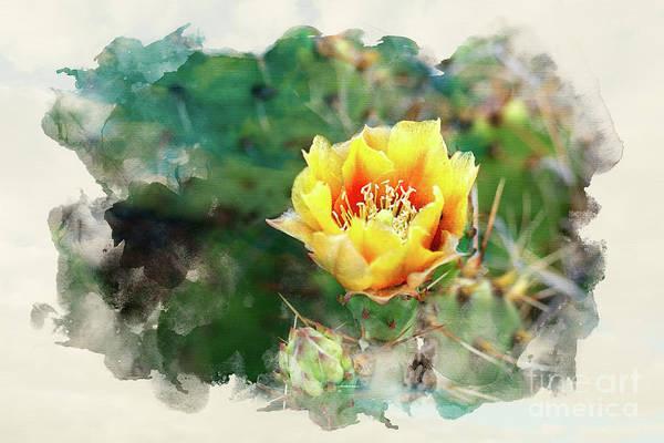 Photograph - Yellow Hottie by Susan Warren