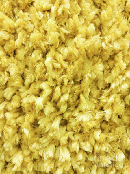 Wall Art - Photograph - Yellow Long Pile Carpet by Tom Gowanlock