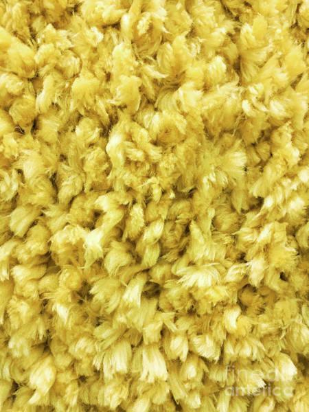 Wall Art - Photograph - Yellow Long Pile Carpet by Tom Gowanlock