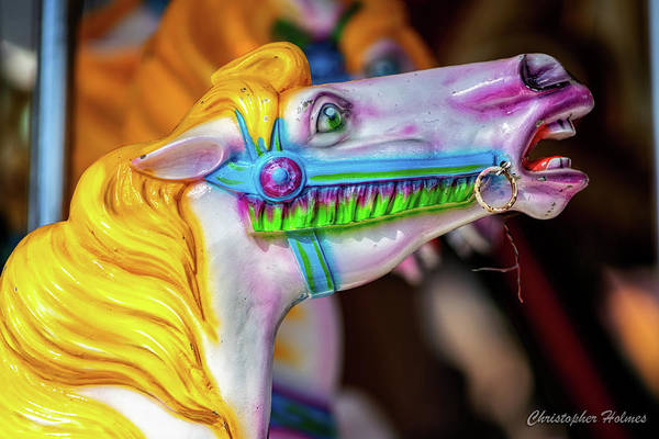Photograph - Yellow Mane Carousel Horse by Christopher Holmes
