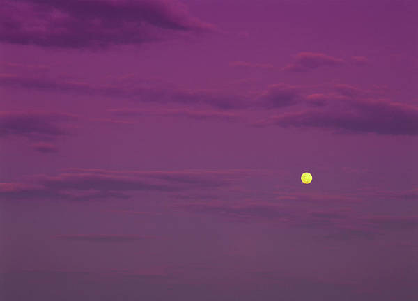 Australia Photograph - Yellow Moon In Mauve Twilight Sky Over by Australian Scenics