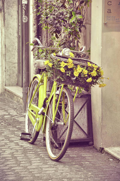 Photograph - Yellow Petals by JAMART Photography