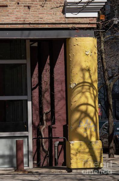 Wall Art - Photograph - Yellow Pillar by David Bearden