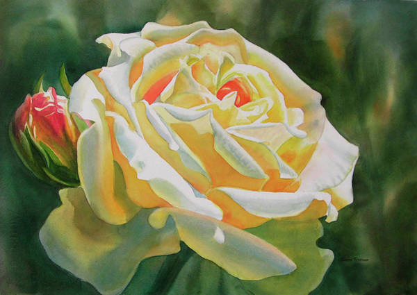 Freeman Wall Art - Painting - Yellow Rose With Bud by Sharon Freeman
