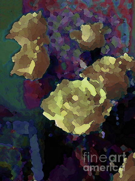 Photograph - Yellow Roses Venturing Out by Corinne Carroll