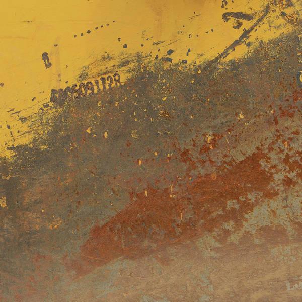 Wall Art - Photograph - Yellow Rustic Chic 3 by Karen Jensen