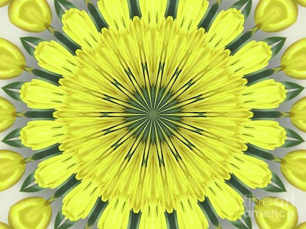 Photograph - Yellow Tulips Kaleidoscope Mandala Abstract 1 by Rose Santuci-Sofranko