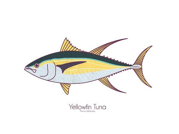 Wall Art - Digital Art - Yellowfin Tuna by Kevin Putman