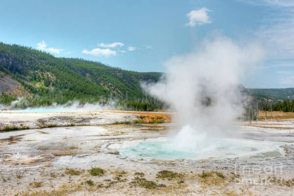 Photograph - Yellowstone Bubbling Pools by Paul Quinn