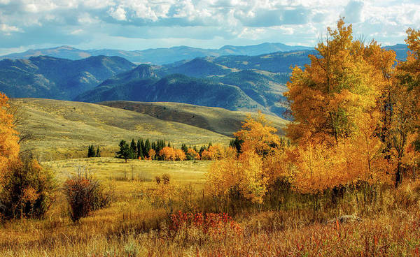 Wall Art - Photograph - Yellowstone Dressed For Fall by N P S Diane Renkin
