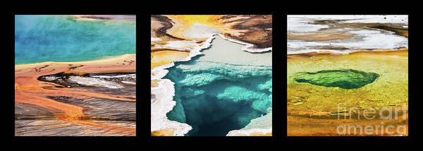 Wall Art - Photograph - Yellowstone Hot Springs Triptych by Delphimages Photo Creations