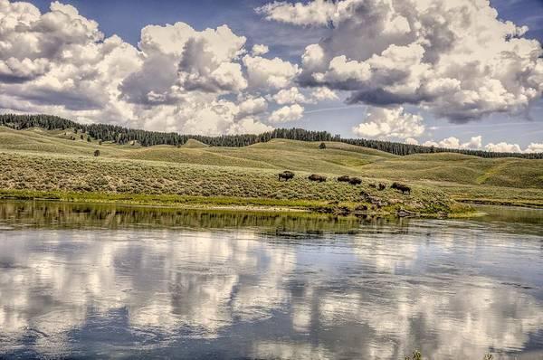 Photograph - Yellowstone Lake And Bison by Chance Kafka