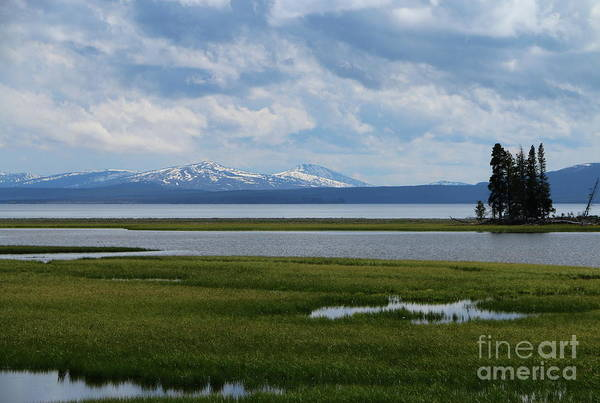 Photograph - Yellowstone Lake  At Pelican Creek by Christiane Schulze Art And Photography