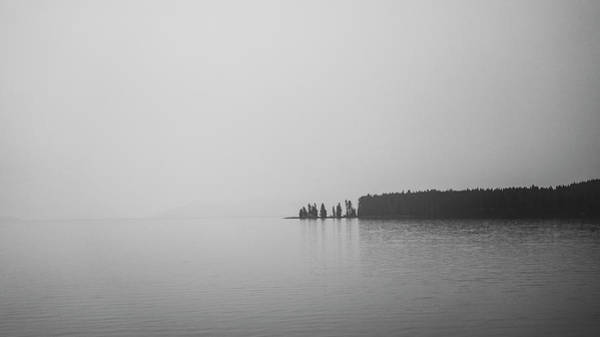Photograph - Quiet Moment by David Monahan