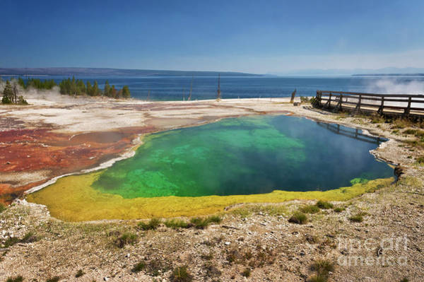 Wall Art - Photograph - Yellowstone Lake by Delphimages Photo Creations