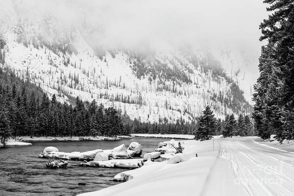 Wall Art - Photograph - Yellowstone Winter Scenery 1 by Timothy Hacker
