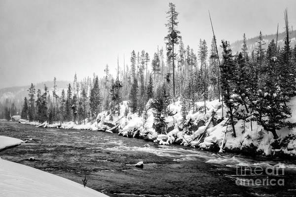 Wall Art - Photograph - Yellowstone  Winter Scenery 2 Bw by Timothy Hacker