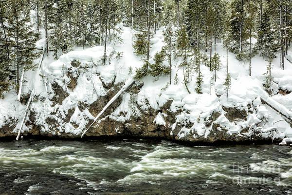 Wall Art - Photograph - Yellowstone Winter Scenery 3 by Timothy Hacker