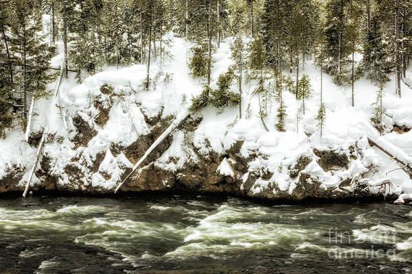 Wall Art - Photograph - Yellowstone Winter Scenery 4 by Timothy Hacker