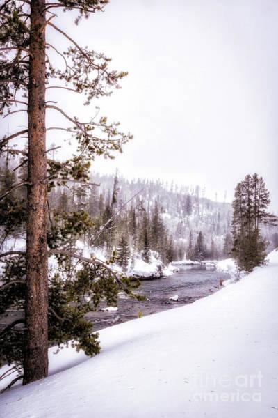 Wall Art - Photograph - Yellowstone Winter Scenery 5 by Timothy Hacker
