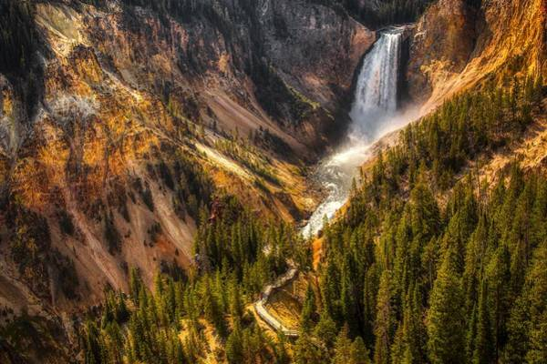 Wall Art - Photograph - Yellowstone's Lower Falls by N P S Neal Herbert