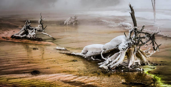 Wall Art - Photograph - Yellowstone's Mineral Beauty  by Karen Wiles