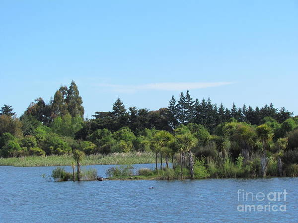 Photograph - yhe Lake by Joyce Woodhouse