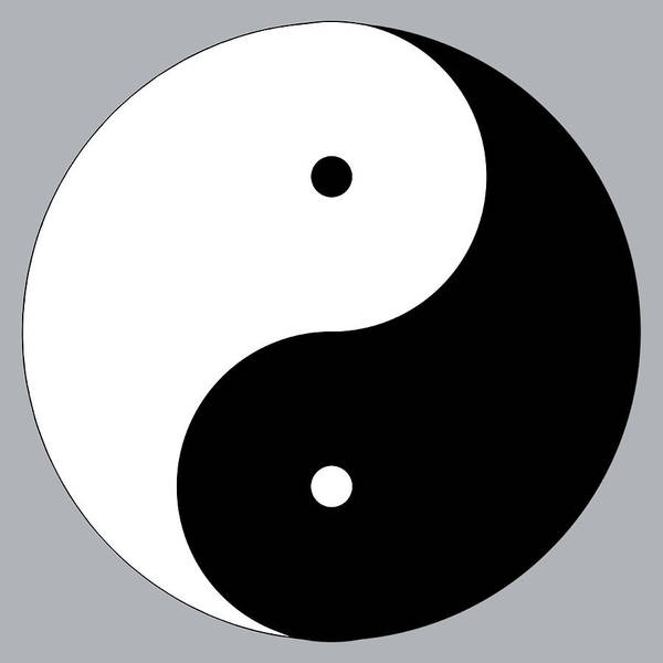 Digital Art - Yin Yang by Jim Dollar