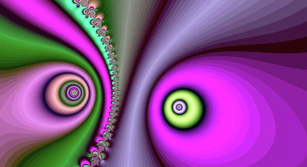 Digital Art - Yin Yang Pink Fine Art by Don Northup